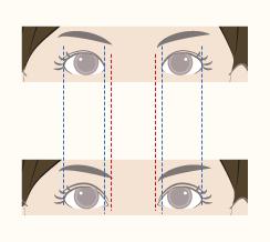 理想的な目のバランス