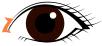 蒙古ヒダをZ型に切開するイメージ
